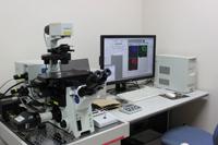 共焦点レーザー走査型顕微鏡